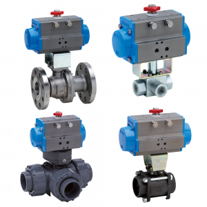 Pneumatically Actuated Valves